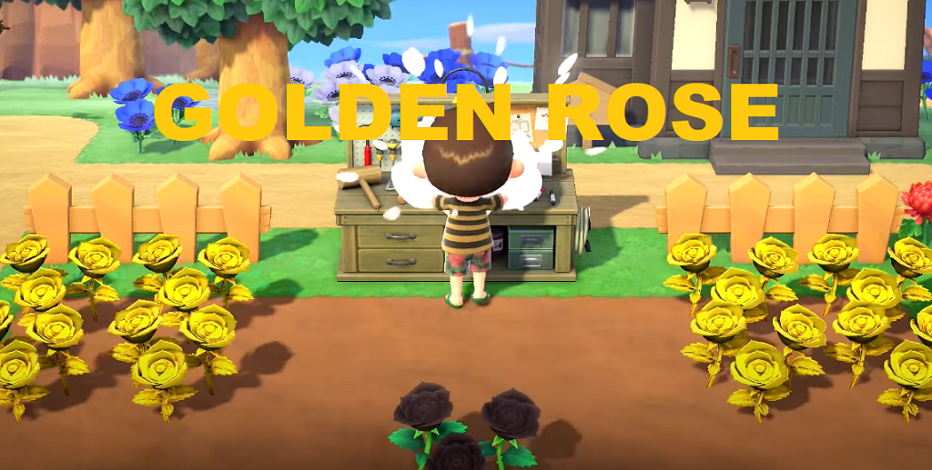 Animal Crossing New Horizons Golden Roses